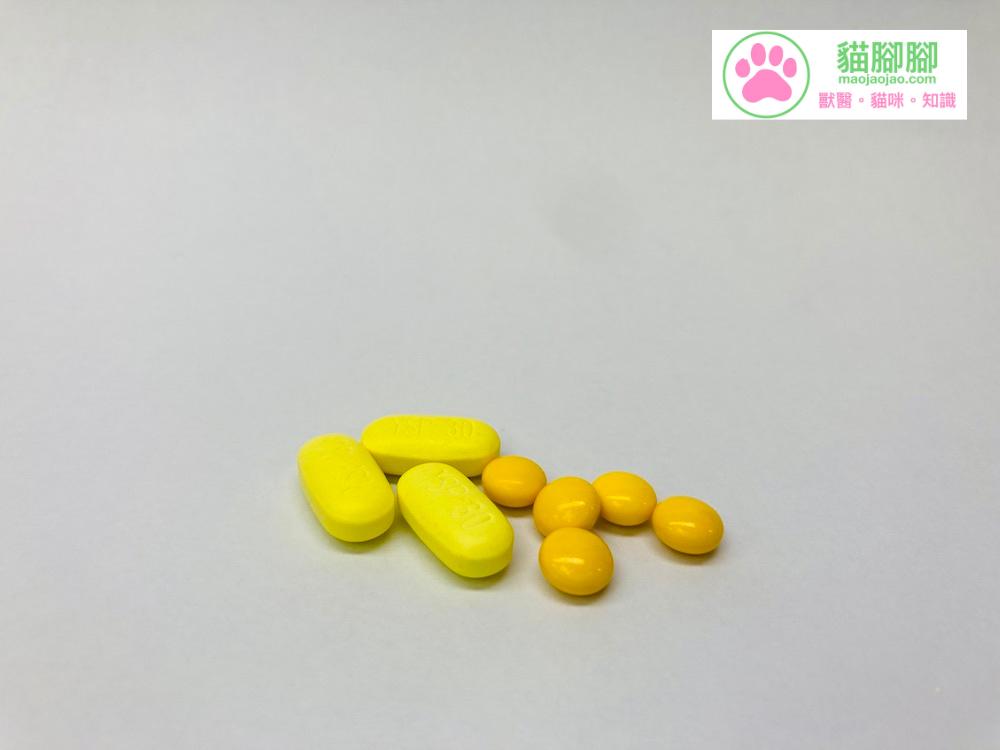 腸溶衣包覆的錠劑藥物